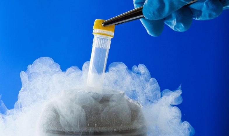Uova in azoto liquido